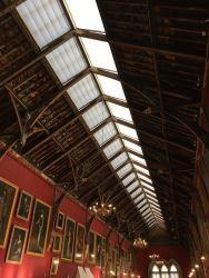 malovany-strop