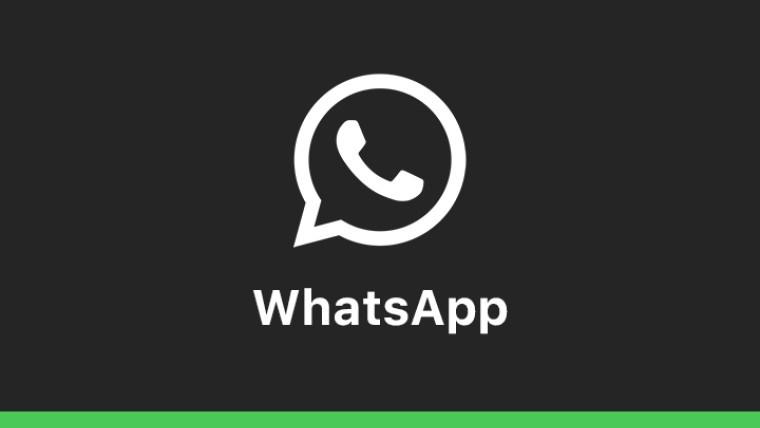 """اس امیج کا """"ALT"""" ٹیگ نہیں ہے. اور اس کی فائل کا نام whatsapp_chat_mute.jpg ہے"""