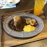ムーミンバレーパークのムーミン谷食堂のおさびし山のハヤシライス