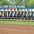 Lone Star Park Horses at the Gate