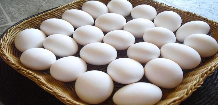 cesta-de-huevos