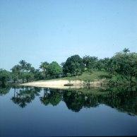 amazonas-seltene sandufer