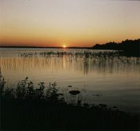 bolmensee-letztes Licht 1985