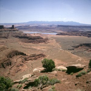 Dead Horse Point 1986