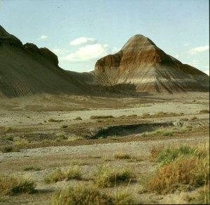Painted Desert 1983