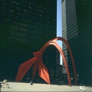 chicago-nils fotografiert flamingo