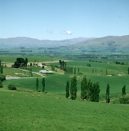 neuseeland-christchurch-parklandschaft 2001