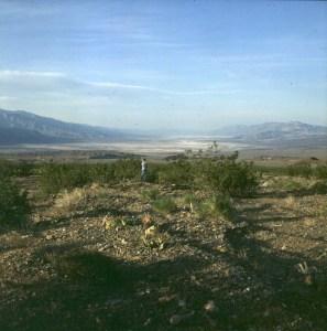 Death Valley nördlich des Zentrums