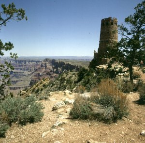 grand-canyon-desert-view