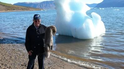 groenland-Polarfuchs als Souvenir 2007