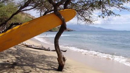 hawaii-Parkplatz für Surfbrétter 030