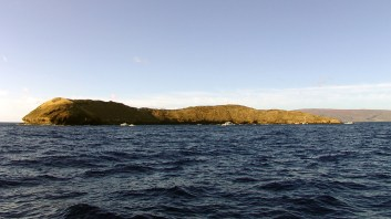 hawaii-Traumbucht zum Tauchen-102