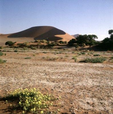Namibia Im Sossusvlei 1987