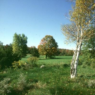new-hampshire-idylle zum Foliagebeginn