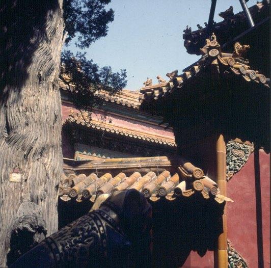 Peking-Kaiserpalast-Privatdaecher 2000