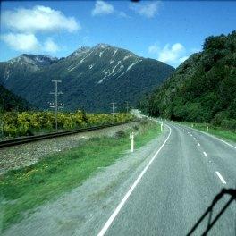 neuseeland queenstown-ginster 2001