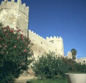 Tunesien-Sfaxmauer 1980