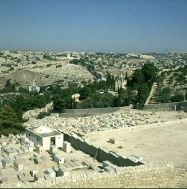 Jerusalem- Kapelle Domino flevit