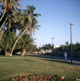 oman-salalah vor Fort 1989