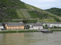rhein-weinberg-steil