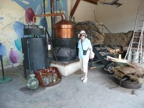 rhone-lavendel-maja