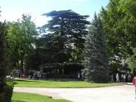 Rhone-Avignon Park