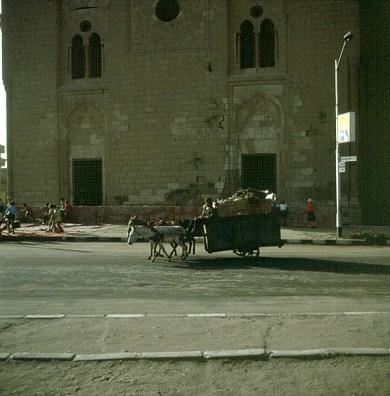 Alt-Kairo Müllentsorgung