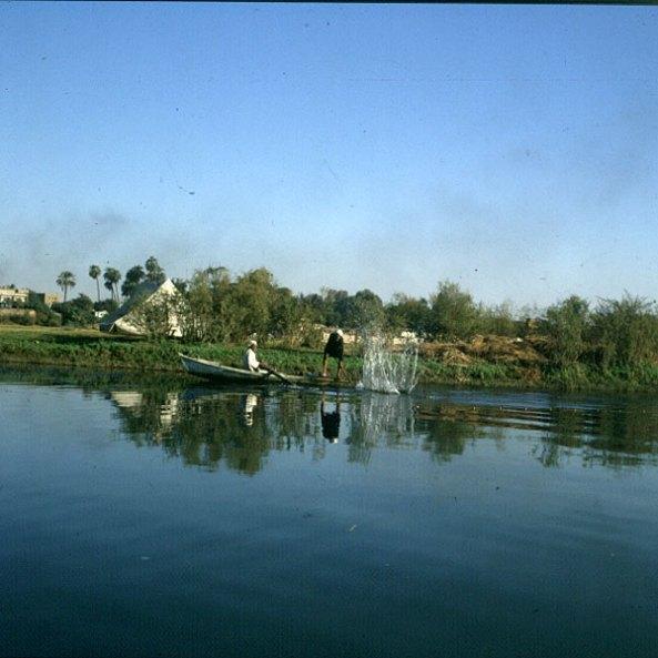 Nil- Fischer am Morgen