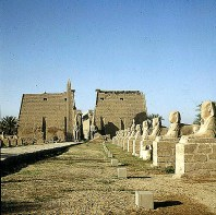 Luxortempel Sphinxallee 1777 ausgegraben