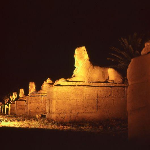 Ägypten Luxor Sphinx Allee Nacht