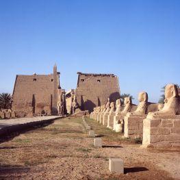 Ägypten Luxor Sphinx Allee