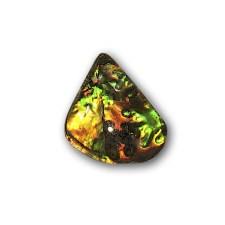 Ammolite Ultrabrite w/ Lichen