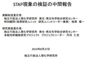 理研CDB STAP検証実験中間報告 相澤慎一氏