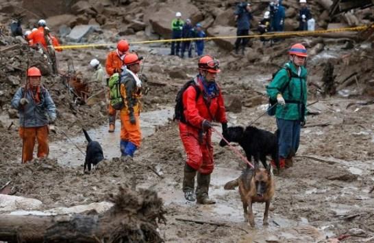 2014.8.20広島土砂災害 救助犬