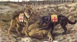 軍用救助犬