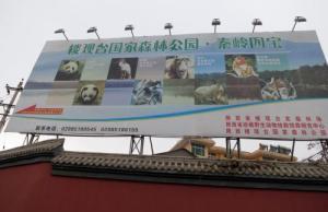 陝西(せんせい)省珍稀野生動物護救飼養研究センター