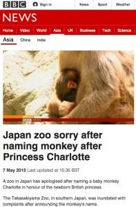 BBC 高崎山の赤ちゃん猿にシャーロット