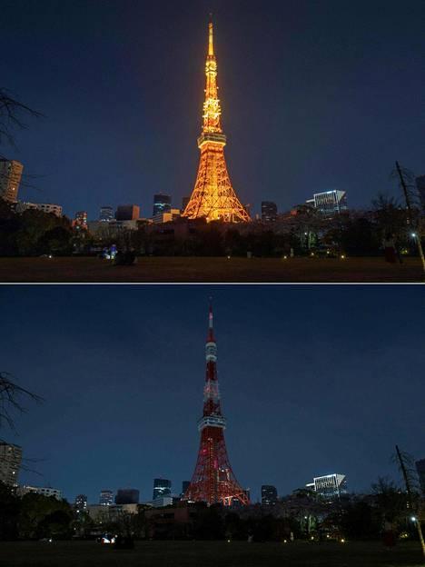 Tokion Tokyo Tower.
