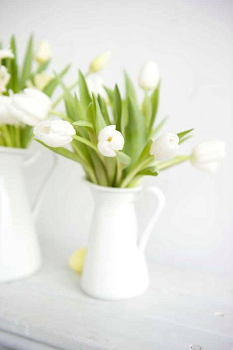 The tulips make spectacular decorations for the Easter table.