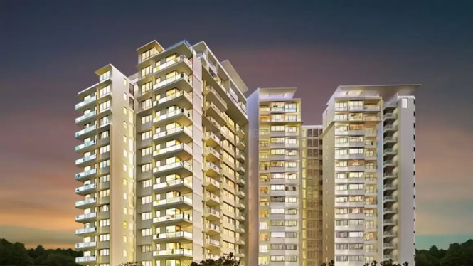 Rej United In Whitefield Bangalore Price Reviews