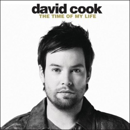 The Time Of My Life Single David Cook