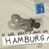 Wie siehts aus in Hamburg? Tomte song