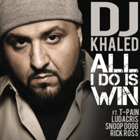 All I Do Is Win (feat. T-Pain, Ludacris, Snoop Dogg & Rick Ross) DJ Khaled