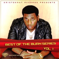 Best of Burn Series, Vol. 1 - Burna Boy mp3 download
