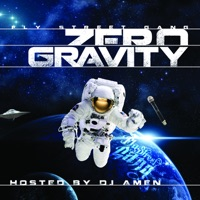 Zero Gravity - Fly Street Gang mp3 download