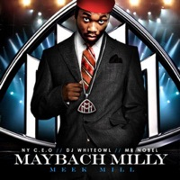 Perfectionist - Single - Meek Mill mp3 download