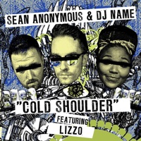 Cold Shoulder (feat. Lizzo) - Single - Sean Anonymous & DJ Name mp3 download