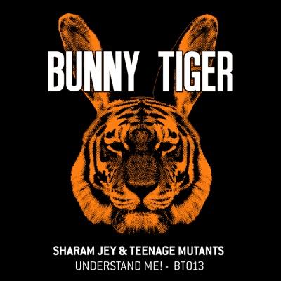 Understand Me! - Sharam Jey & Teenage Mutants mp3 download