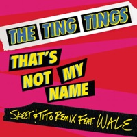That's Not My Name (Skeet & Tito Remix) [feat. Wale] - Single - The Ting Tings mp3 download