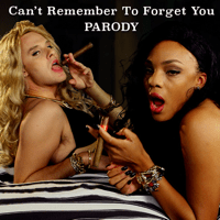Can't Remember to Forget You Parody Bart Baker